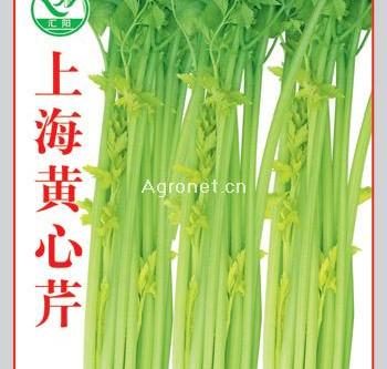 Leaf celery with shrimp wonton