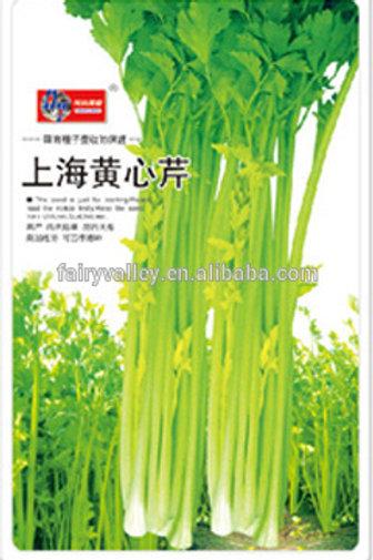 Shanghai Golden Hearted Celery