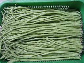 Rare Snake Yard Long Bean