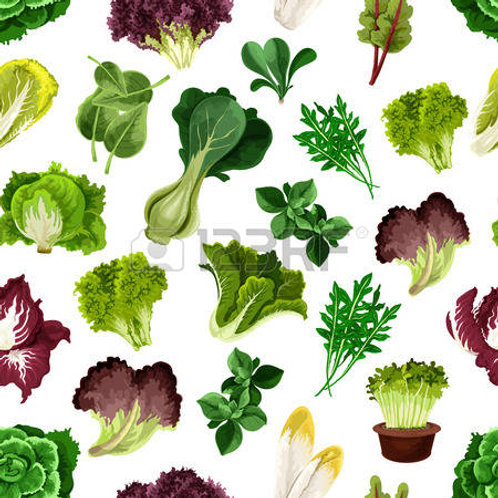 10 Packages of Salad Green Seeds (Value Pack)