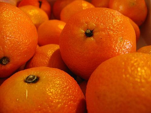 Clementine Mandarin Orange