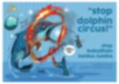 dolphin circus.jpg