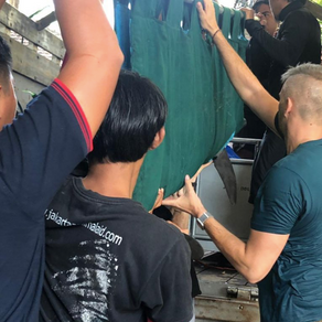 Dolphins confiscated from Melka hotel