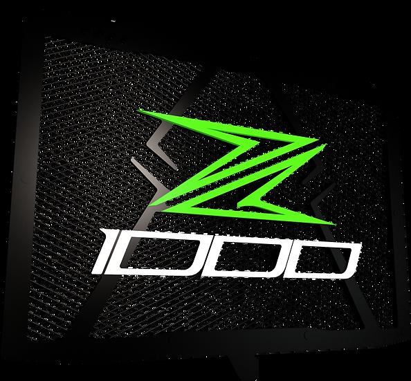 Protector de Radiador Z1000/Z1000 SX