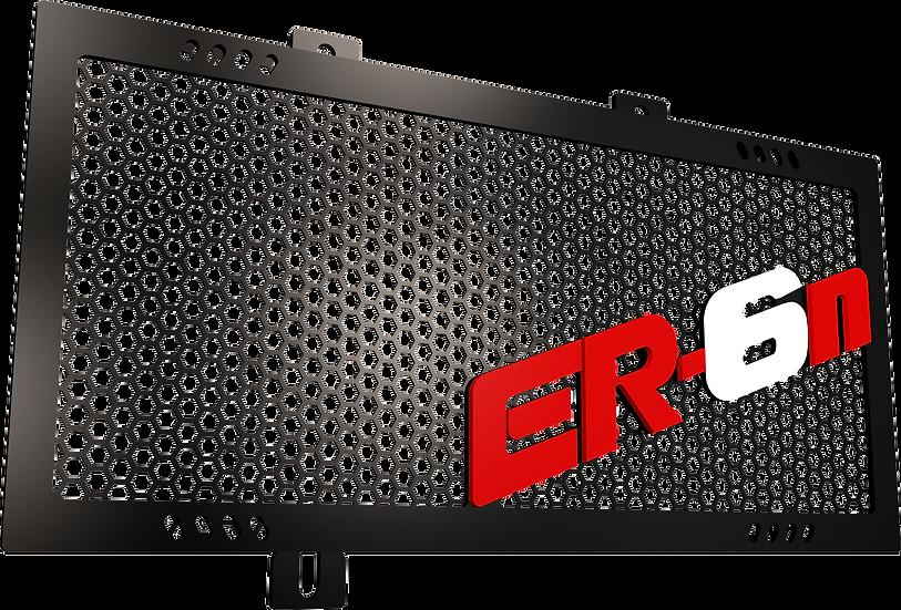 Protector Radiador ER6N