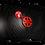 Thumbnail: Protector Radiador Z900