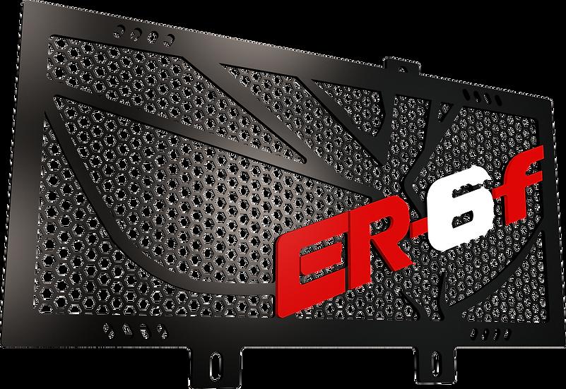 Protector Radiador ER6F 650 (2009-2011)