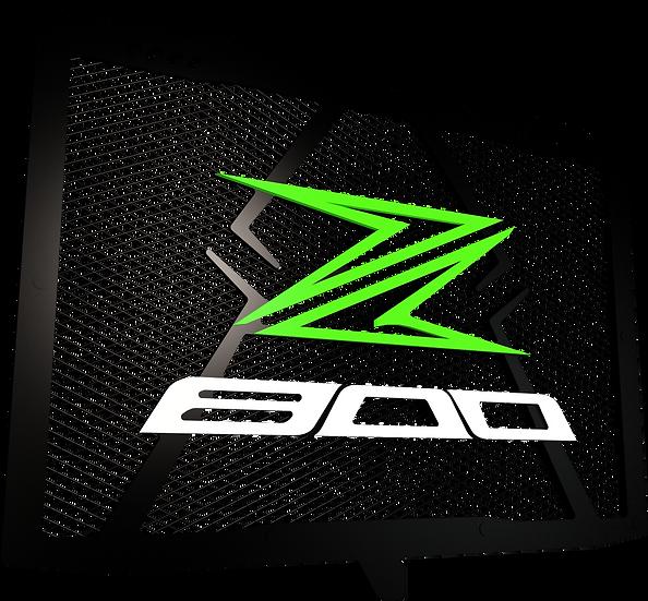 Protector de Radiador Z800/Z800e