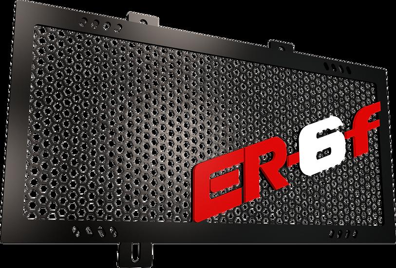 Protector Radiador ER6F