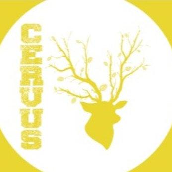 L'Ecol Aux Mousses, Cervus bio, blonde