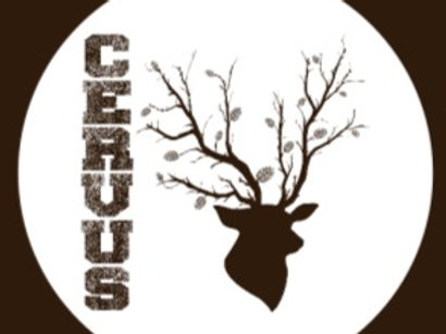 L'Ecol Aux Mousses, Cervus bio, brune