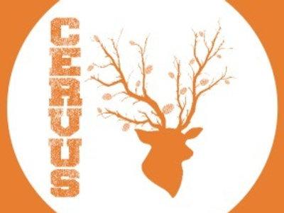 L'Ecol Aux Mousses, Cervus bio, ambrée