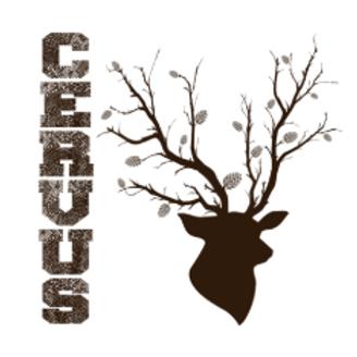 L'Ecol Aux Mousses, Cervus brassin éphémère