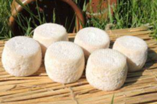 La ferme du Mont de Berneuil, fromage de chèvre demi-frais