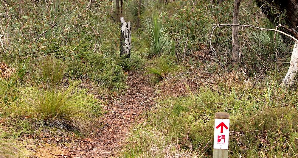 Heysen Trail, Kyeema