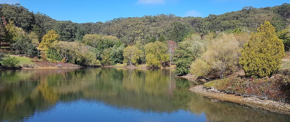 Mount Lofty Botanic Garden Banner