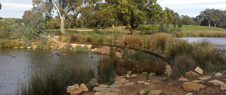Oaklands Wetland and Reserve, South Australia