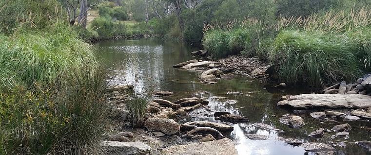 Onkaparinga River NP Banner