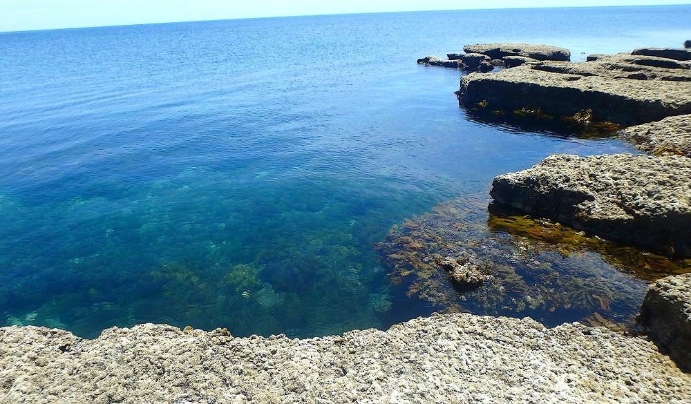 Aldinga Reef