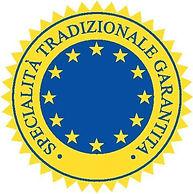 logo_STG.jpg