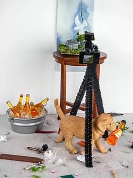 studio pup web.jpg