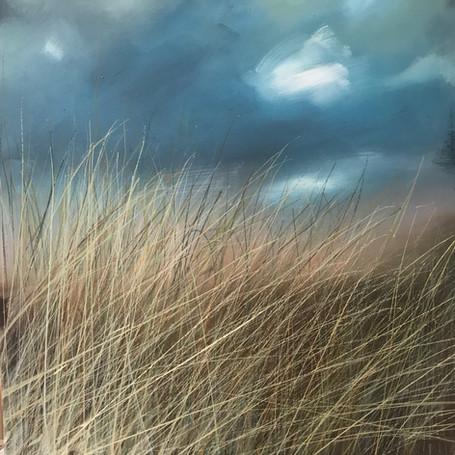 Grasses (SOLD)
