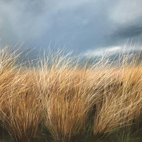 Winter Grasses (SOLD)