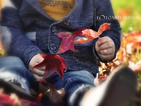Hello Autumn : servizio fotografico in autunno.
