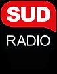 Logo sud 95.1_ParlonsVrai_Marseille.png