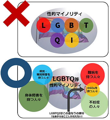 LGBTQとインターセックスの関係 LGBTI