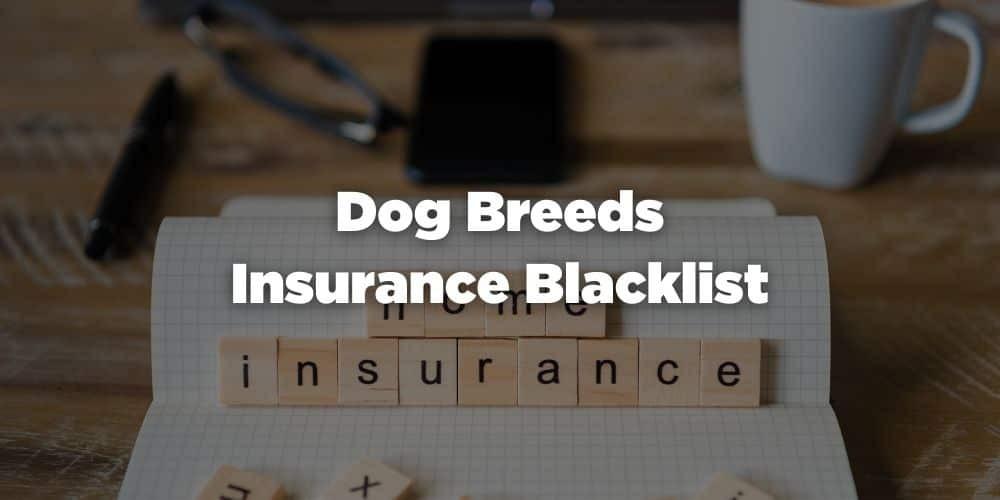 Dog Breeds Insurance Blacklist