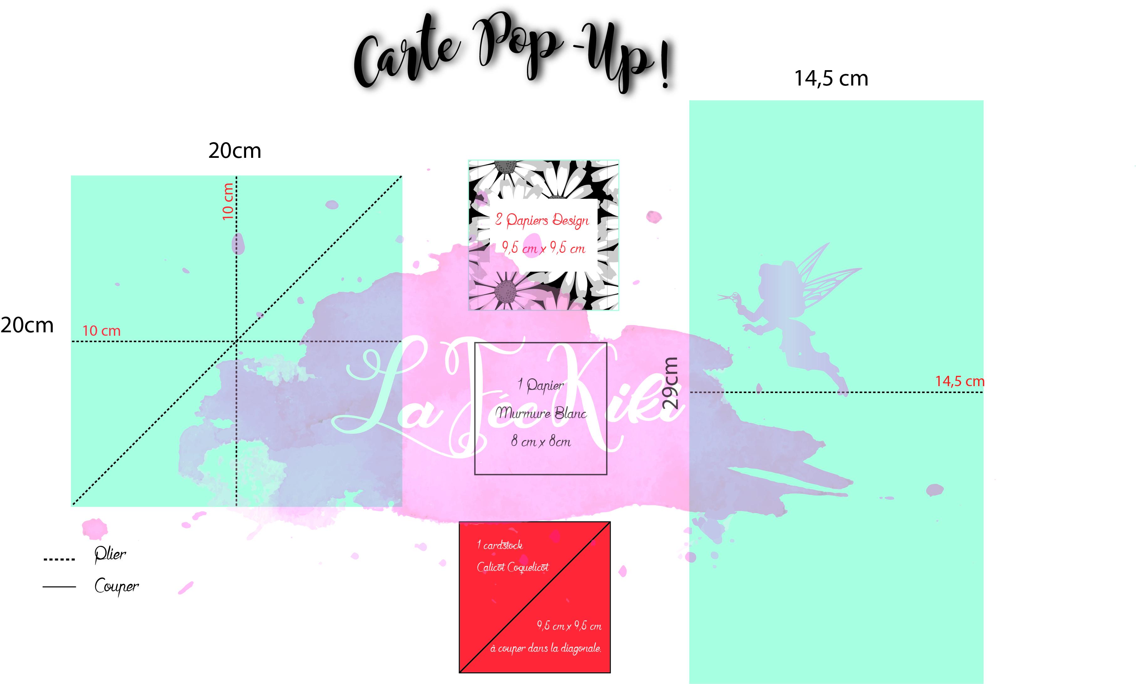 carte_pop_up_schéma.jpg