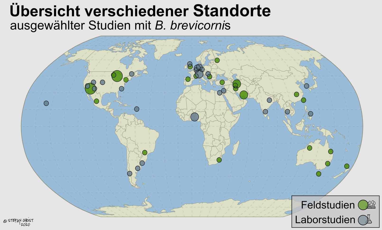 Weltkarte-final.jpg