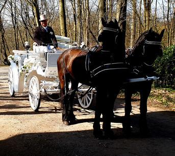 Hochzeit-Dortmund (17).jpg