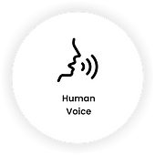 human voice.png