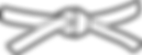 whitebelt-judo_479px.png