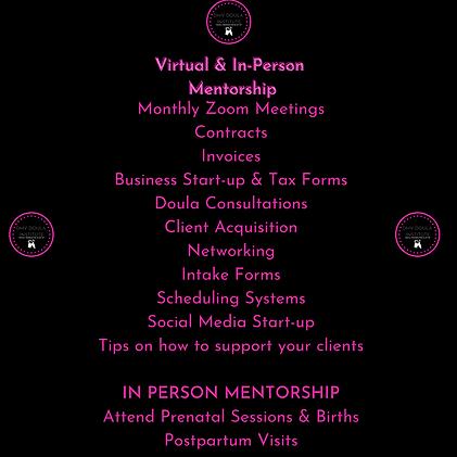 Virtual & In-Person Mentorship .png