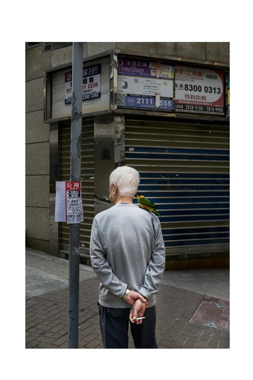HONGKONG Einzeln 500x750px Hoch14.jpg