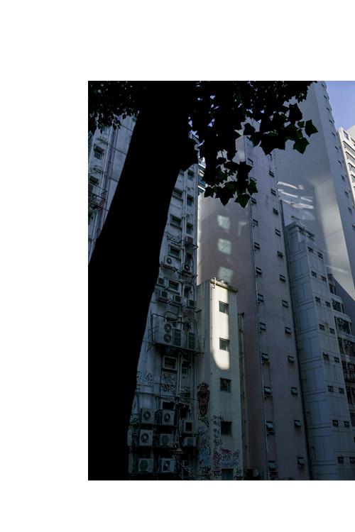 HONGKONG Einzeln 500x750px Hoch2.jpg