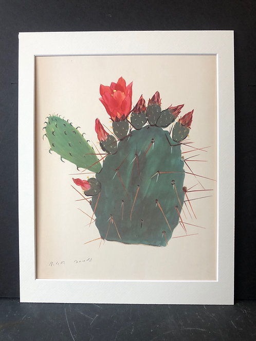 Cactus Print: Opuntia Bergeriana