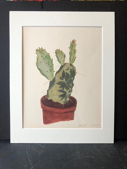 Cactus Print: Opuntia Monacantha Marginata