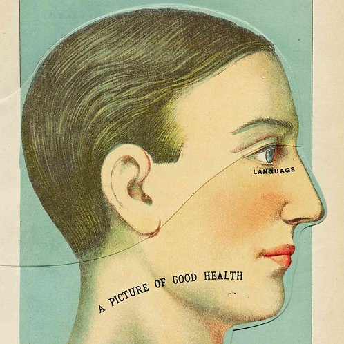 Antique Interactive Manikin Print of the Head and Brain