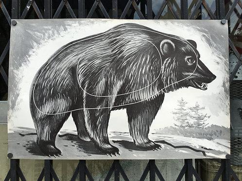 Vintage Archery Shooting Target of A Bear