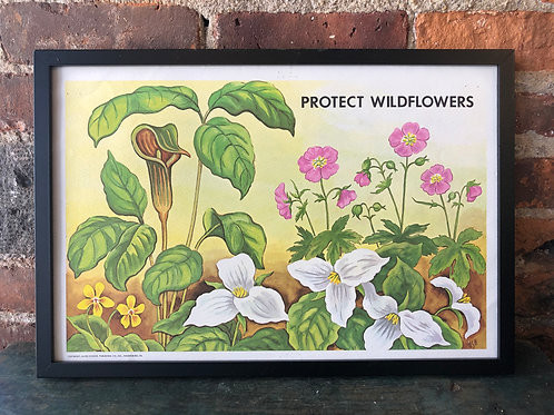1970s Vintage School Ecology Poster: Protect Wildflowers