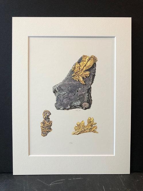 Gold, C. Caspari, 1967