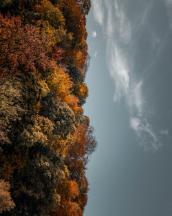 jordan-lee-photography-knaresborough