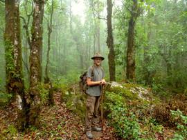 Alone in the jungle.JPG