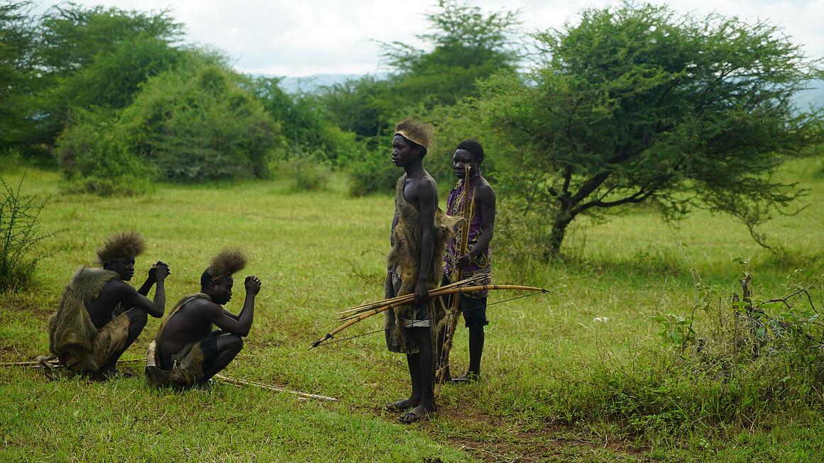 Azabe in the savannah.jpg