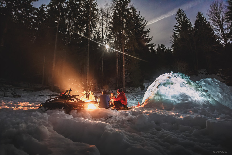 Photo Surive Grand Froid paysage nocturn