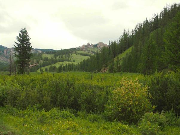 A proximité du monastère de Gunjiin (aïm